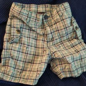 Little boys sailor shorts
